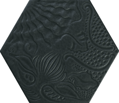 Codicer Gaudi Black 25x22